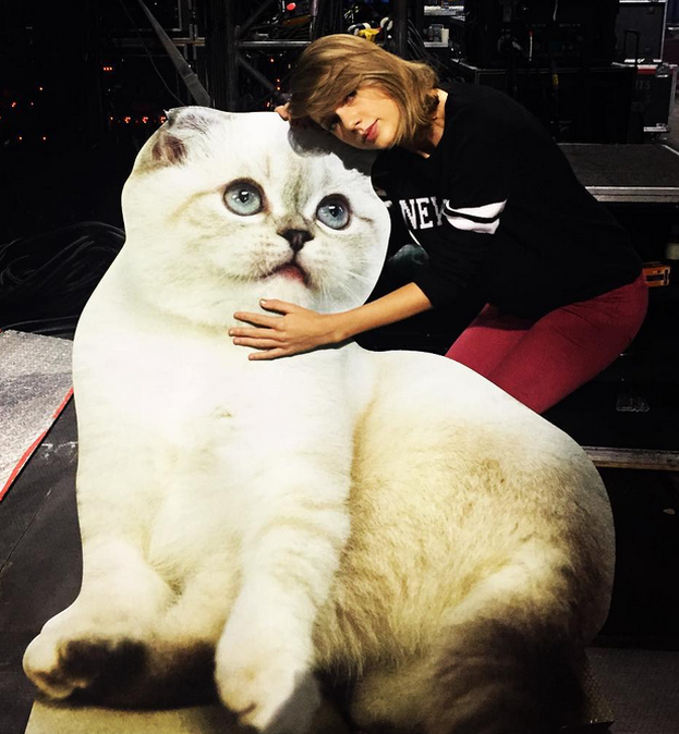 Drake zakochany w Taylor Swift?!