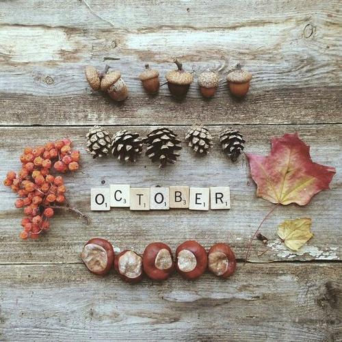 Jesienny mix zdjęć - zainspiruj się!