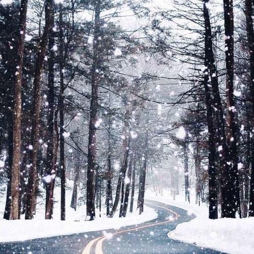 Zimowy mix zdjęć