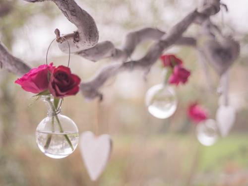 DIY - woda różana