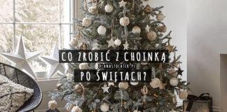 Co zrobić z choinką po Świętach